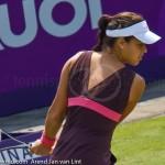 Ana Ivanovic  Ordina Open 2007 123