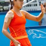 Ana Ivanovic Unicef Open 2010 42