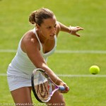 Dominika Cibulkova Ordina Open 2009 415-2