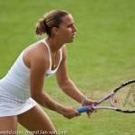 Dominika Cibulkova Ordina Open 2009 423