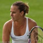 Dominika Cibulkova Ordina Open 2009 452