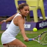 Dominika Cibulkova Ordina Open 2009 556