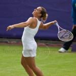Dominika Cibulkova Ordina Open 2009 610
