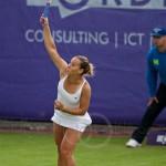 Dominika Cibulkova Ordina Open 2009 611a 593