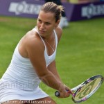 Dominika Cibulkova Ordina Open 2009 730