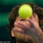 Robin Haase 600 x 250 Davis Cup NL Finland 10 feb 2012 4498