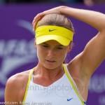 Daniela Hantuchova Ordina-Open-2009-287