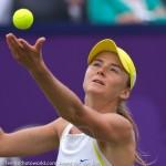 Daniela Hantuchova Ordina-Open-2009-36