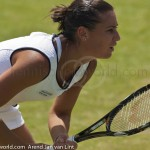 Flavia Pennetta Ordina Open 2009 return 66