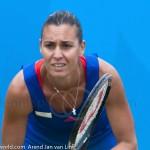 Flavia Pennetta Unicef Open 2012 return 2328