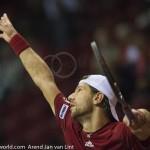 Jurgen Melzer Davis Cup 2013 NL Oostenrijk 313