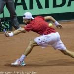 Jurgen Melzer Davis Cup 2013 NL Oostenrijk 9115