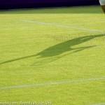 Michaella Krajicek Ordina Open 2009 445