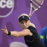 Michaella Krajicek Ordina Open 2009 539