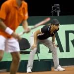 Stephanie Davis Cup Nl Kro 2014 1485