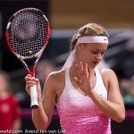 Anna Schmiedlova Fed Cup 2015 1059
