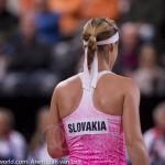 Anna Schmiedlova Fed Cup 2015 1120
