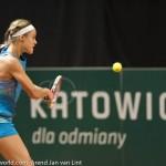 Anna Schmiedlova Katowice 2013 BH 2067