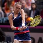 Magdalena Rybarikova Fed Cup 2015 1843
