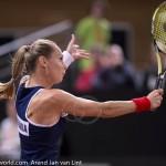 Magdalena Rybarikova Fed Cup 2015 2008
